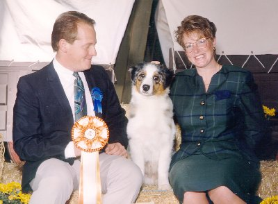Telly Best of Breed Puppy 1994 ASCA National